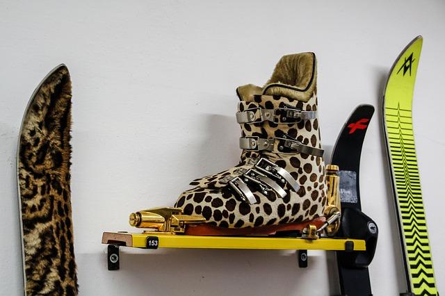lyžařské boty a lyže